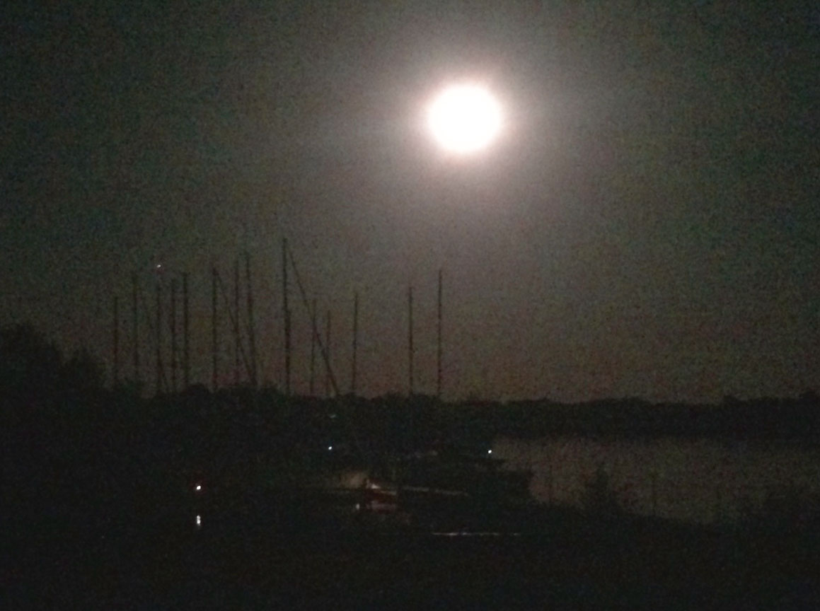 The Harvest Moon lights up the sky above Yacht Club Harbor